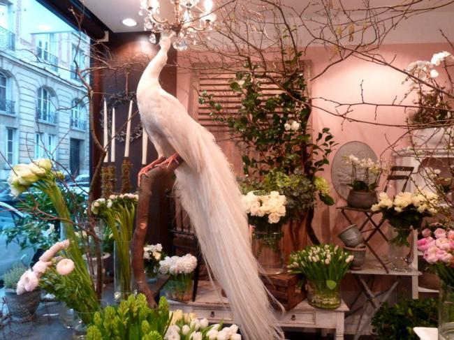 Цветочный магазин дизайн интерьера